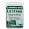 The Nutri Store Lactase 5.000 FCC Mini Tabletten Dosierspender, 120 St